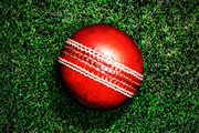 Cricket Ball.