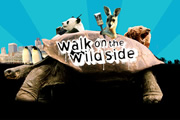 Walk On The Wild Side. Copyright: BBC.