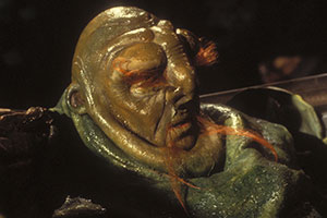 The Hitchhiker's Guide To The Galaxy. Prostetnic Vogon Jeltz (Martin Benson). Copyright: BBC.