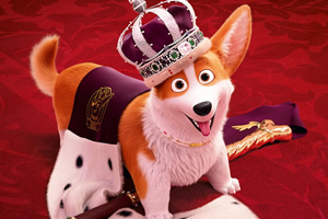The Queen's Corgi.