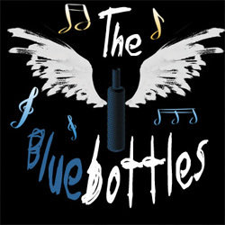 The Ride of the Bluebottles. Copyright: You, Me And Him.