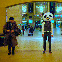 A Panda Suit, Pythagoras and Plenty of Puns. Copyright: Universal Pictures.