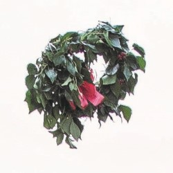 Simon Munnery: The Wreath.