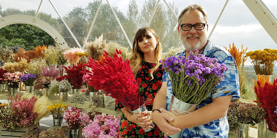 The Big Flower Fight. Image shows from L to R: Natasia Demetriou, Vic Reeves.